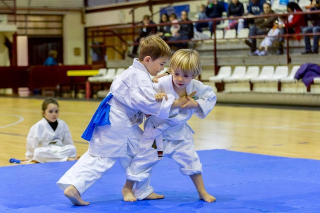 iniciacion-a-las-artes-marciales